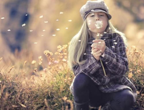 6 Gründe deinen Traum zu leben
